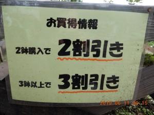 DSCN0842